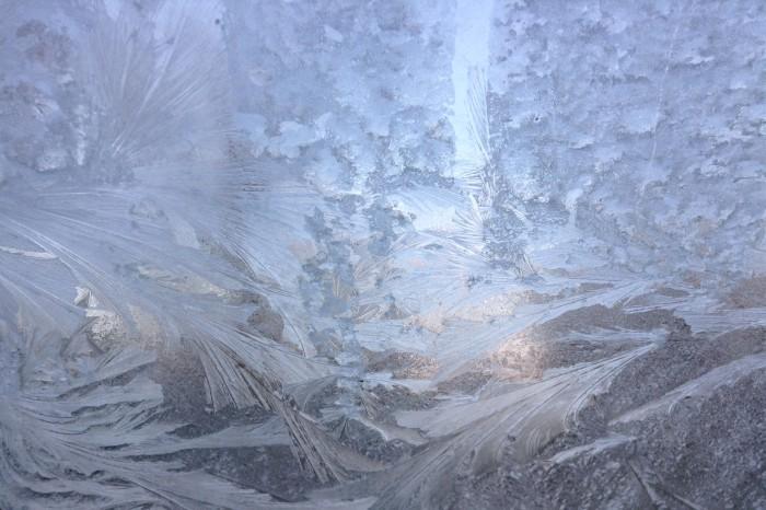 Frost Digital photo Dawn Blair ©2014