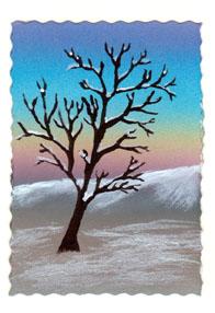 snow-tree-14-032108