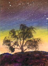 Evening Tree #9